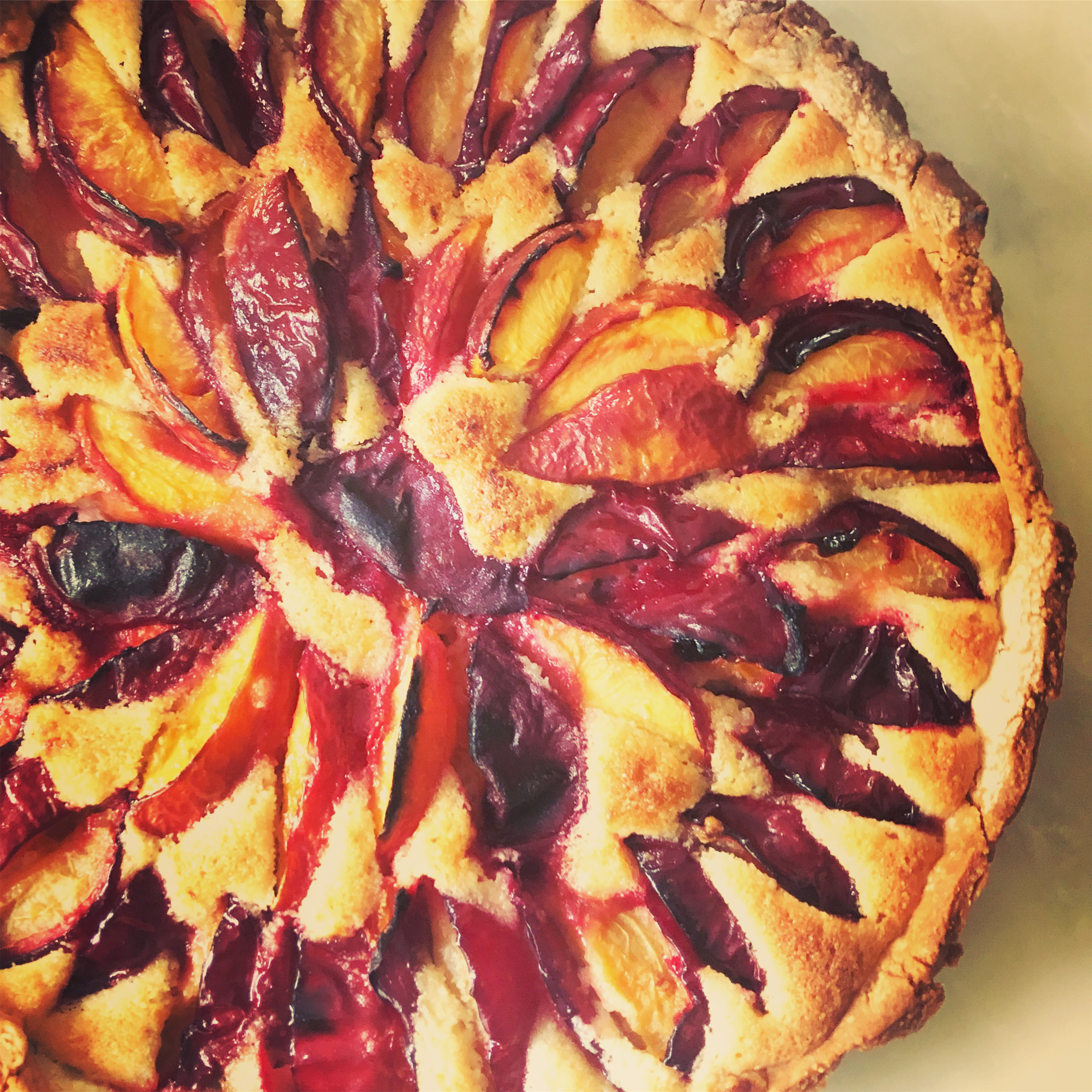 Summer Plum and Almond Tart Close up