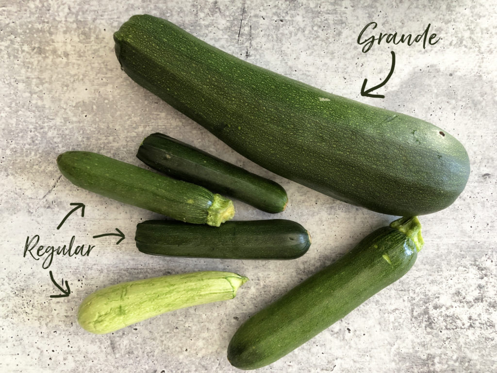 Varying sizes of zucchini from my garden, one substantially larger than the other 5.